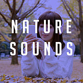 Nature Sounds by Various Artists