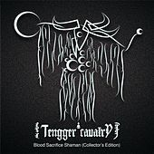 Blood Sacrifice Shaman (Collector's Edition) by Tengger Cavalry