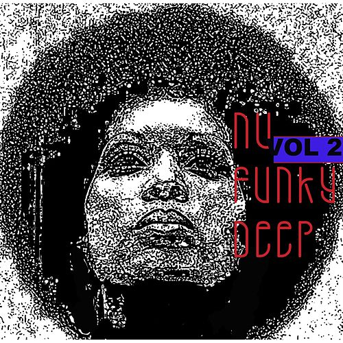 Nu Funky Deep, Vol. 2 by Francesco Demegni