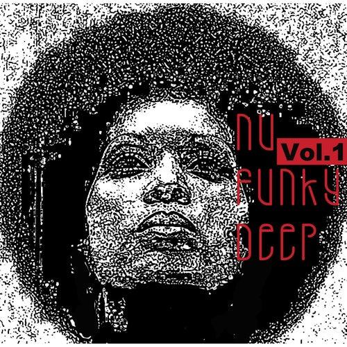 Nu Funky Deep, Vol. 1 by Francesco Demegni