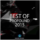 Best Of Profound 2015 by Various Artists