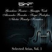 Gioachino Rossini - Giuseppe Verdi - Alexander Borodin - Sergei Prokofiev - Nikolai Rimsky - Korsakov: Selected Arias, Vol. 1 by Various Artists