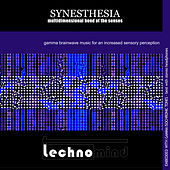 Synesthesia: Multidimensional Bend of the Senses by Techno Mind