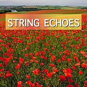 String Echoes by Various Artists