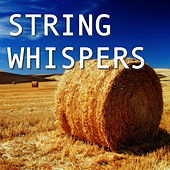 String Whispers by Various Artists