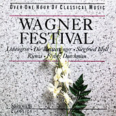 Wagner Festival by Various Artists