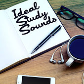 Ideal Study Sounds by Various Artists