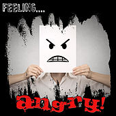 Feeling…angry! by Various Artists