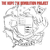 The Hope Six Demoliton Project by PJ Harvey