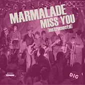 Miss You (Instrumental) by Marmalade