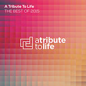 A Tribute To Life: The Best of 2015 by Various Artists