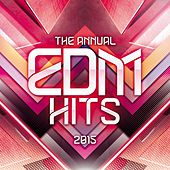 The Annual EDM Hits by Various Artists