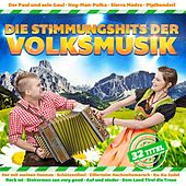 Die Stimmungshits der Volksmusik by Various Artists