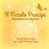Il piccolo principe (Dal film il piccolo principe) by The Tibbs