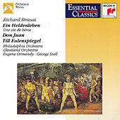 Strauss: Ein Heldenleben; Don Juan; Til Eulenspiegel by Various Artists