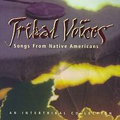 Tribal Voices: Music From Native Americans by Various Artists