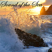 Sound of the Sea – New Age Amazing Music with Sea & Ocean Waves Relaxing Nature Sounds by Nature Sounds Nature Music