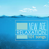 New Age Relaxation 101 - Relaxing Nature Sounds, Piano Intrumental Love Songs, Relaxing Romantic Shades, Solo & Classical Sleep Music Lullabies for Mindfulness Meditation by Various Artists