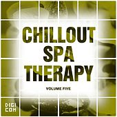 Chillout Spa Therapy, Vol.05 by Various Artists