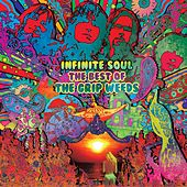 Infinite Soul: The Best Of The Grip Weeds by The Grip Weeds