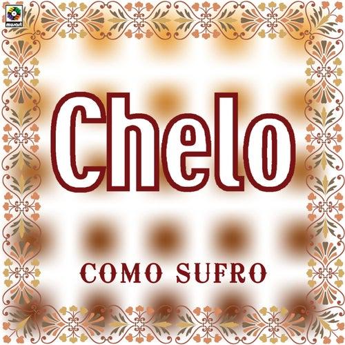 Como Sufro by Chelo