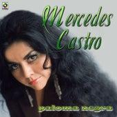 Paloma Negra by Mercedes Castro