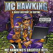 A Brief History Of Rhyme by M.C. Hawking