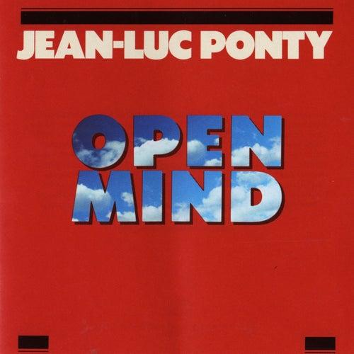 Open Mind by Jean-Luc Ponty