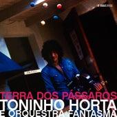 Terra dos Pássaros by Toninho Horta