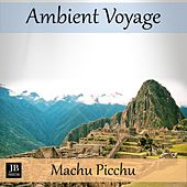 Ambient Voyage: Machu Picchu by Fly Project