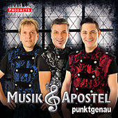 Punktgenau by Musikapostel