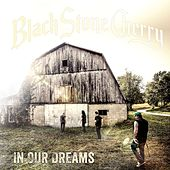In Our Dreams by Black Stone Cherry