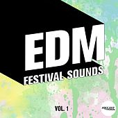 EDM Festival Sounds, Vol. 1 by Various Artists