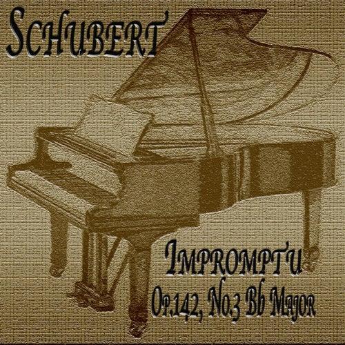 F. Schubert: Impromptu in B-Flat Major, Op. 142, No. 3 by Joohyun Park