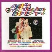 Asas da América - Frevo, Vol. 5 by Various Artists