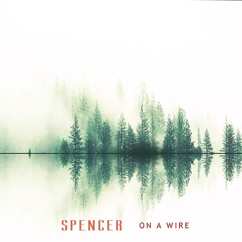 On a Wire by Spencer