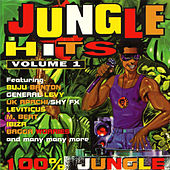 Jungle Hits, Vol. 1 by Various Artists