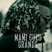 Mami Culo Grande by Astra