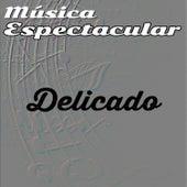 Música Espectacular, Delicado by Werner Müller