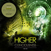 Higher Consciousness by Various Artists