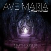 Ave Maria Misericordia by Martin Gugler