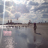 Alive in the Window by The Falcon