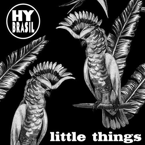 Little Things - Single by Hybrasil