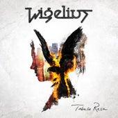 Tabula Rasa by Wigelius