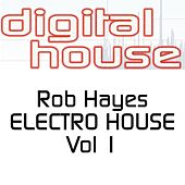Electro House EP Vol 1 by Rob Hayes