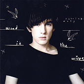 Wind In The Wires by Patrick Wolf