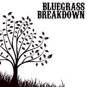 Bluegrass Breakdown by Various Artists