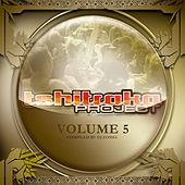 Tshitraka Project Vol.5 by Various Artists