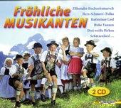 Fröhliche Musikanten by Various Artists