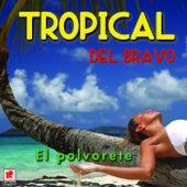 El Polvorete by Tropical Del Bravo